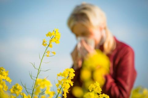 Manifestations-allergie-pollen
